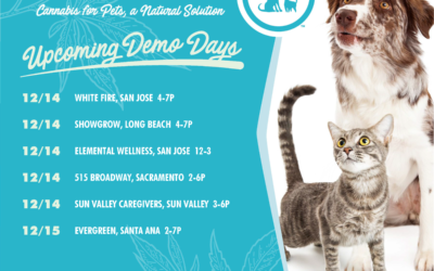 UPCOMING DEMO DAYS